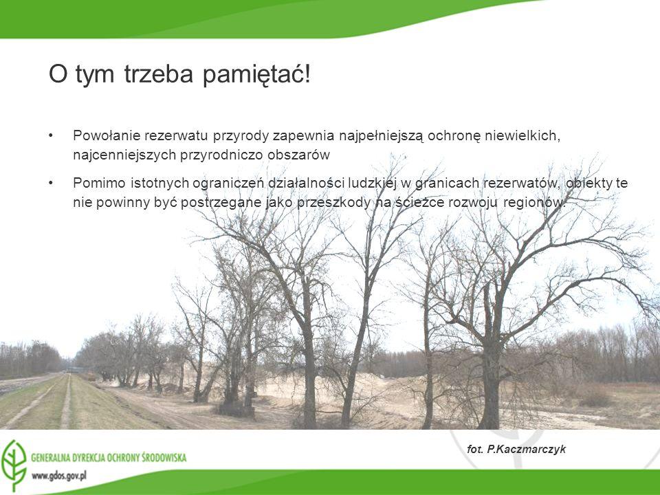 www.gdos.gov.pl fot. P.Kaczmarczyk O tym trzeba pamiętać! Powołanie rezerwatu przyrody zapewnia najpełniejszą ochronę niewielkich, najcenniejszych prz