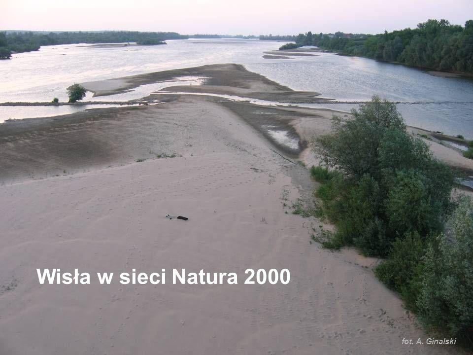 www.gdos.gov.pl fot. A. Ginalski Wisła w sieci Natura 2000