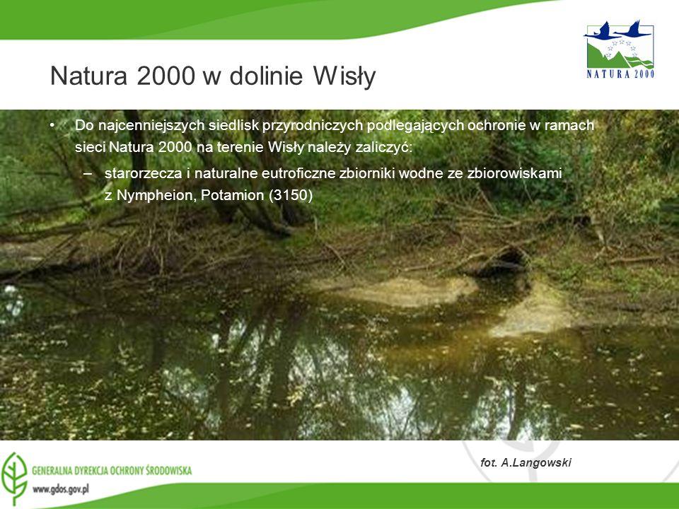www.gdos.gov.pl Natura 2000 w dolinie Wisły Do najcenniejszych siedlisk przyrodniczych podlegających ochronie w ramach sieci Natura 2000 na terenie Wi