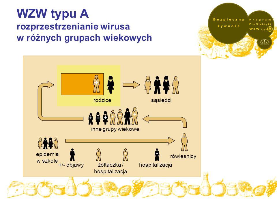 WZW typu A rozprzestrzenianie wirusa w różnych grupach wiekowych epidemia w szkole +/- objawyżółtaczka / hospitalizacja hospitalizacja rówieśnicy inne
