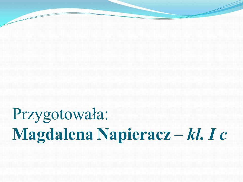 Przygotowała: Magdalena Napieracz – kl. I c