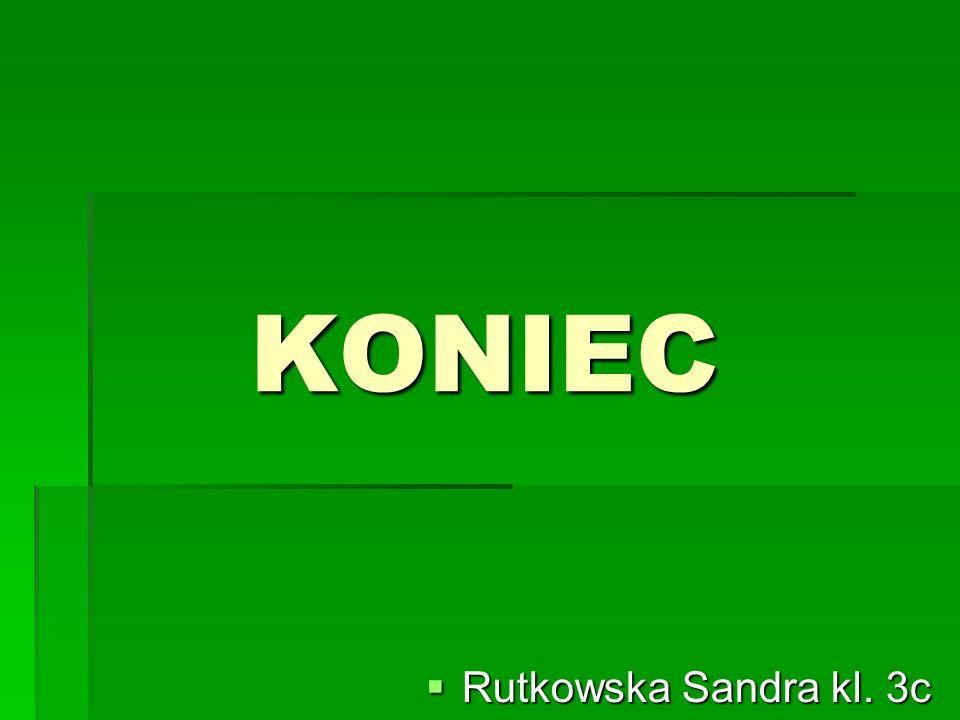 KONIEC Rutkowska Sandra kl. 3c Rutkowska Sandra kl. 3c