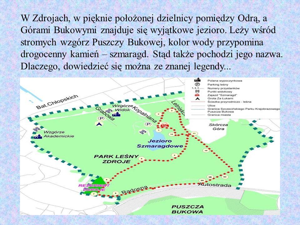 W Zdrojach, w pięknie położonej dzielnicy pomiędzy Odrą, a Górami Bukowymi znajduje się wyjątkowe jezioro.