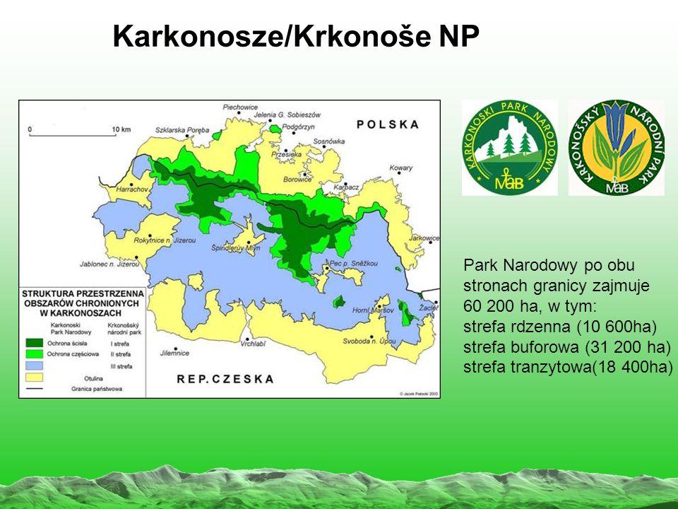 Karkonosze/Krkonoše NP Park Narodowy po obu stronach granicy zajmuje 60 200 ha, w tym: strefa rdzenna (10 600ha) strefa buforowa (31 200 ha) strefa tranzytowa(18 400ha)