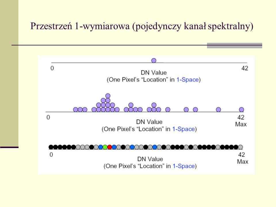 Przestrzeń 1-wymiarowa (pojedynczy kanał spektralny)