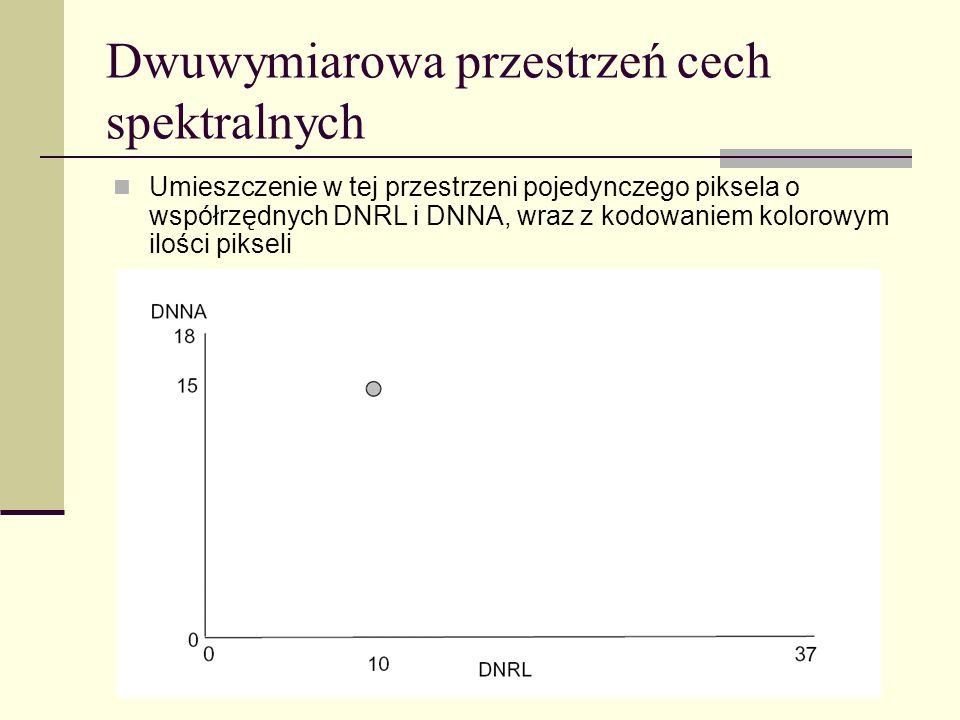 Dwuwymiarowa przestrzeń cech spektralnych Umieszczenie w tej przestrzeni pojedynczego piksela o współrzędnych DNRL i DNNA, wraz z kodowaniem kolorowym
