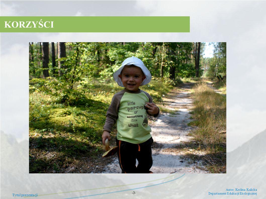 Tytuł prezentacji Autor: Krolina Kulicka Departament Edukacji Ekologicznej -3- KORZYŚCI
