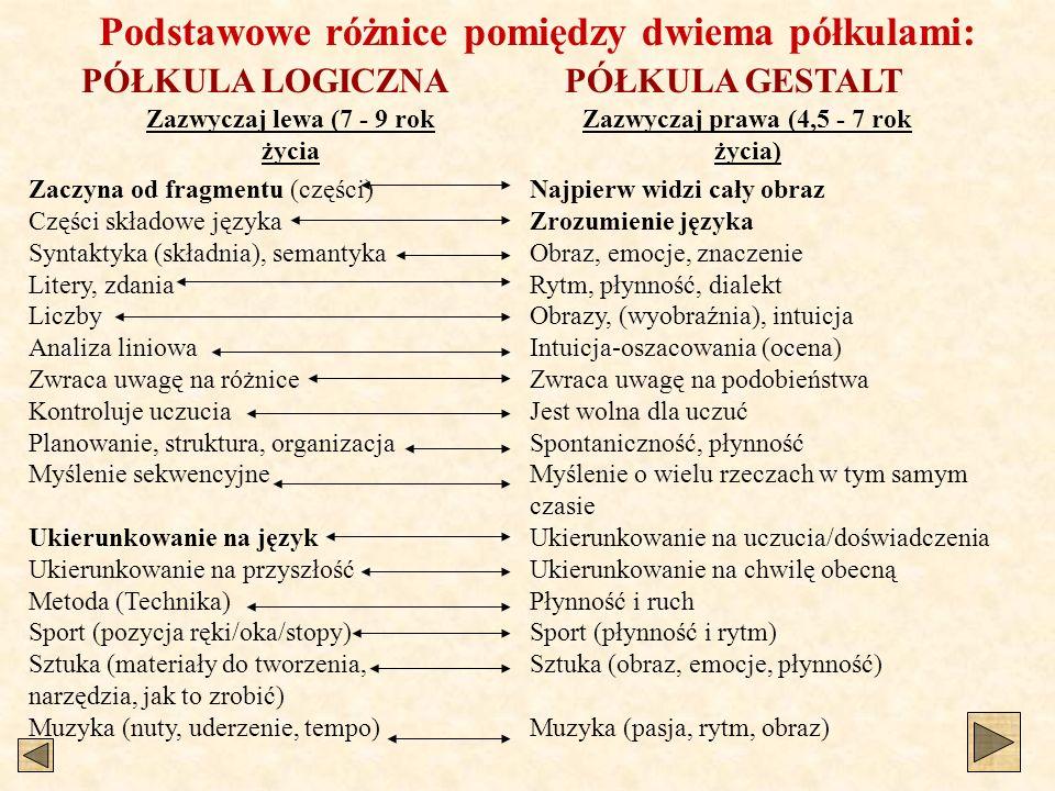 Podstawowe różnice pomiędzy dwiema półkulami: Zaczyna od fragmentu (części) Części składowe języka Syntaktyka (składnia), semantyka Litery, zdania Lic