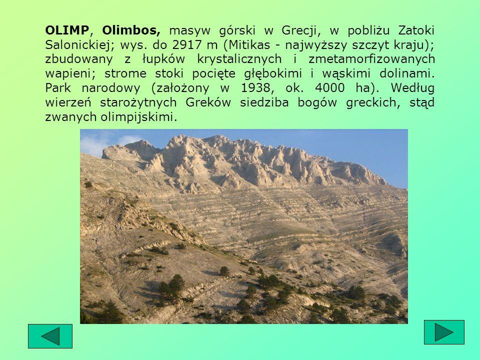 Bogowie ci zostali skonstruowani w wyobraźni na podobieństwo Greków, podobnie wyglądali, mieli podobne problemy, poza tym mieli także ludzkie cechy ch