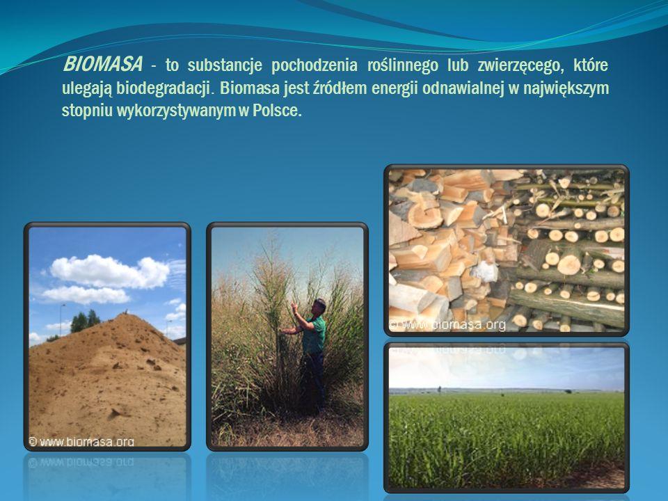 BIOMASA - to substancje pochodzenia roślinnego lub zwierzęcego, które ulegają biodegradacji. Biomasa jest źródłem energii odnawialnej w największym st