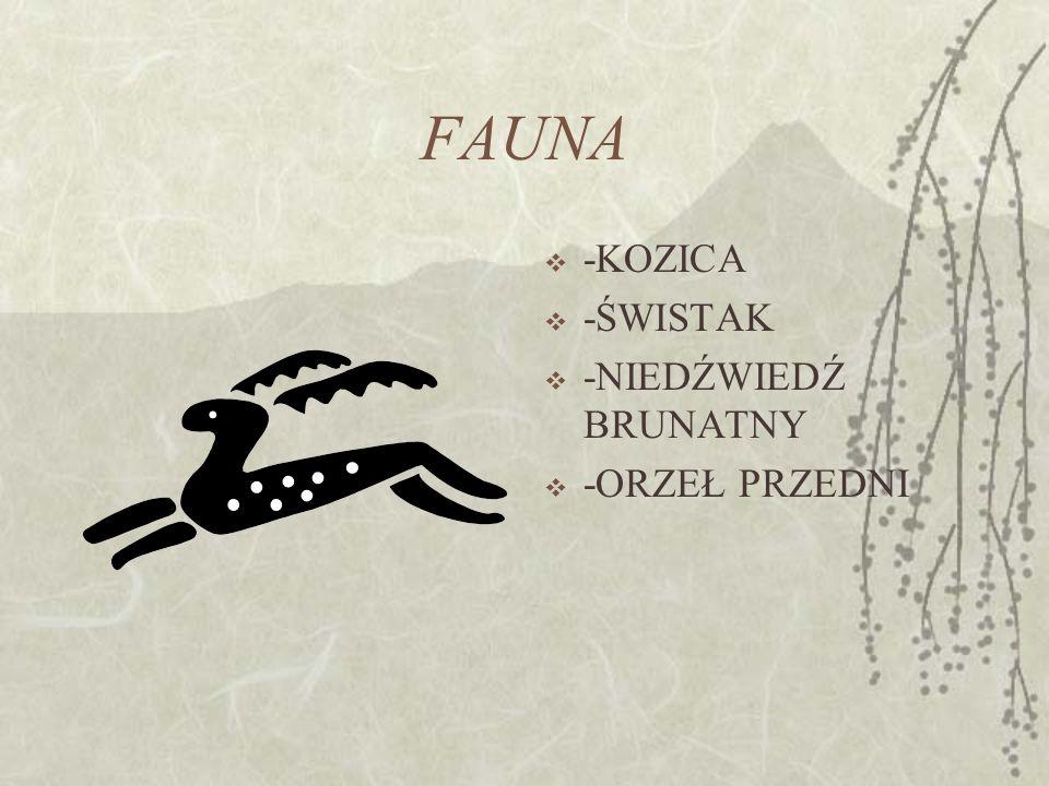 4. piętro alpejskie (halne) (1800-2250 m npm) z klimatem umiarkowanie zimnym i dominacją niskich muraw wysokogórskich; 5. piętro subniwalne (turniowe)