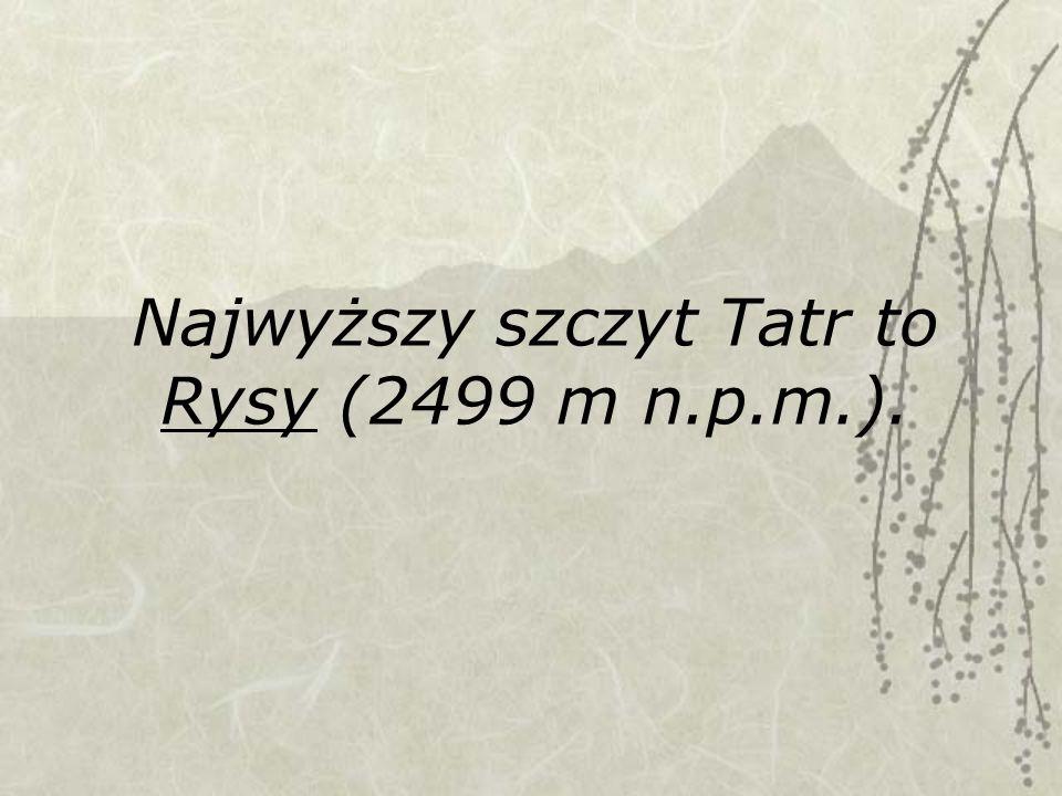 Najwyższy szczyt Tatr to Rysy (2499 m n.p.m.).