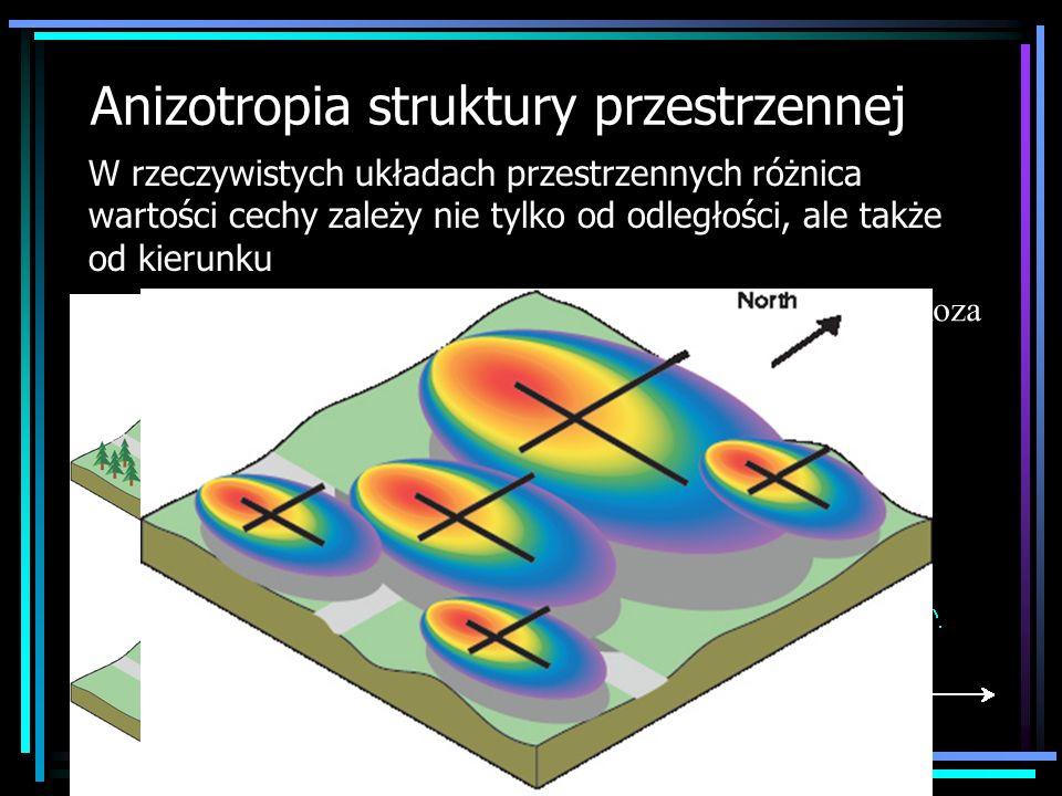 Anizotropia struktury przestrzennej W rzeczywistych układach przestrzennych różnica wartości cechy zależy nie tylko od odległości, ale także od kierun