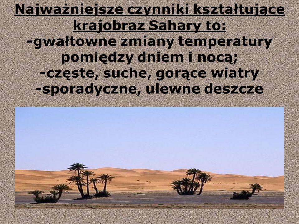 Najważniejsze czynniki kształtujące krajobraz Sahary to: -gwałtowne zmiany temperatury pomiędzy dniem i nocą; -częste, suche, gorące wiatry -sporadyczne, ulewne deszcze