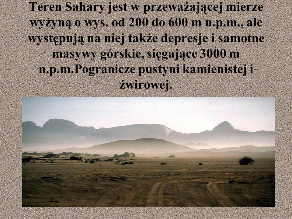 Teren Sahary jest w przeważającej mierze wyżyną o wys.