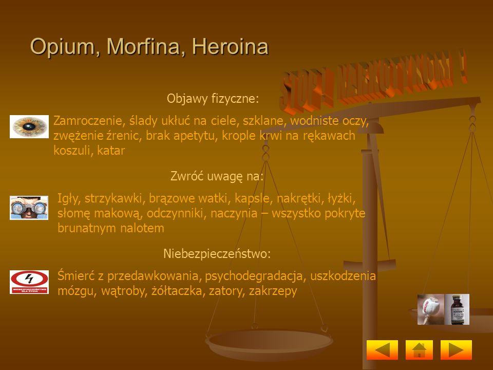 Opium, Morfina, Heroina Objawy fizyczne: Zamroczenie, ślady ukłuć na ciele, szklane, wodniste oczy, zwężenie źrenic, brak apetytu, krople krwi na ręka