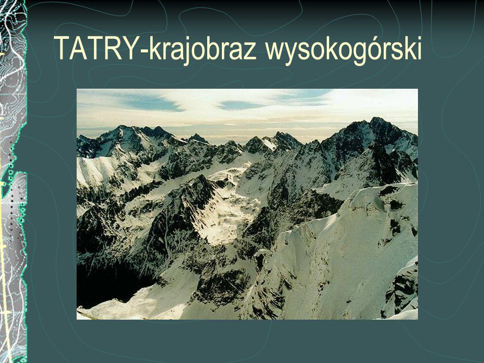 TATRY-krajobraz wysokogórski