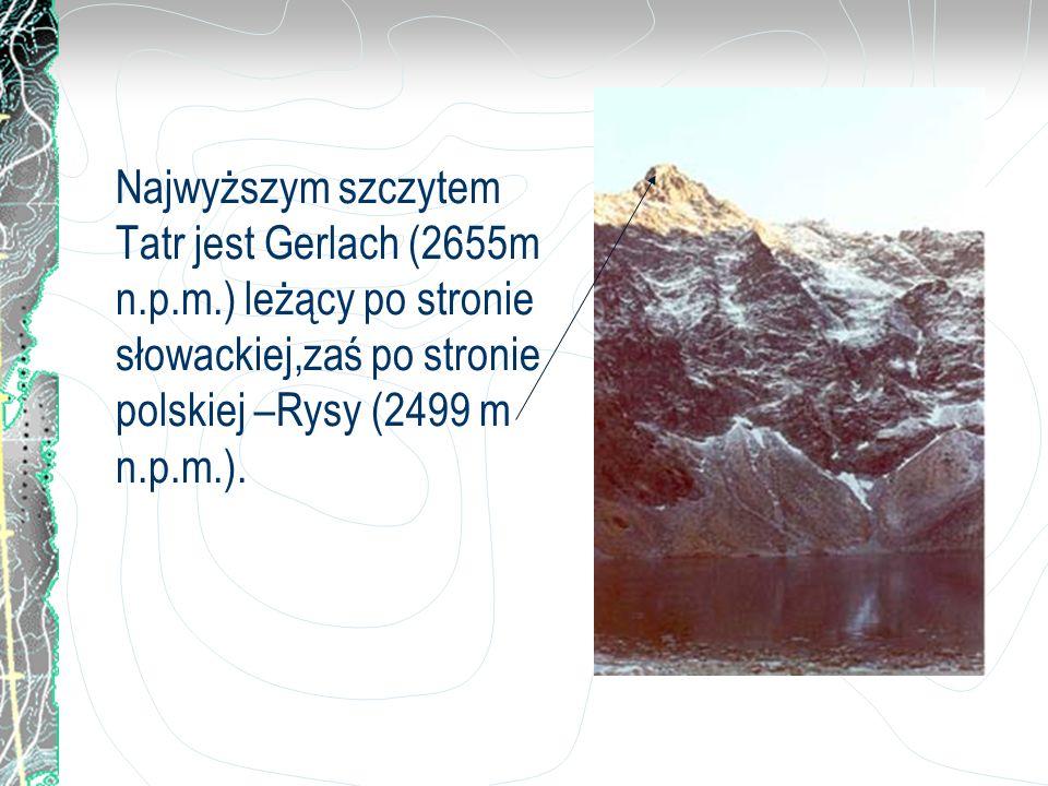 Najwyższym szczytem Tatr jest Gerlach (2655m n.p.m.) leżący po stronie słowackiej,zaś po stronie polskiej –Rysy (2499 m n.p.m.).