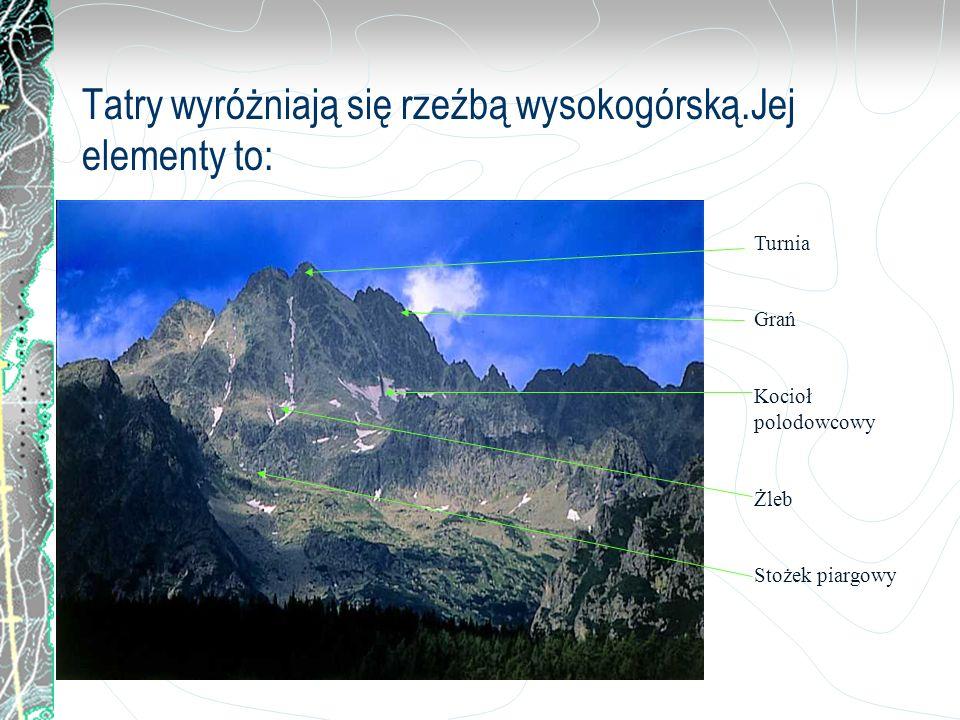 Tatry wyróżniają się rzeźbą wysokogórską.Jej elementy to: Turnia Grań Kocioł polodowcowy Żleb Stożek piargowy