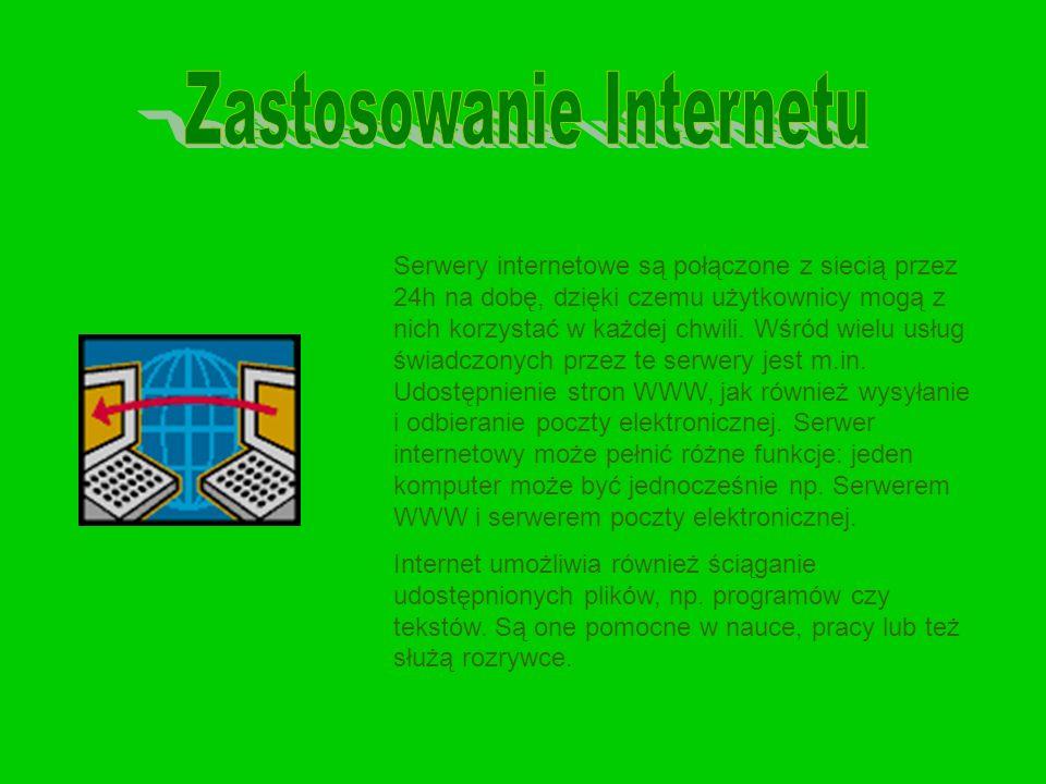 Serwery internetowe są połączone z siecią przez 24h na dobę, dzięki czemu użytkownicy mogą z nich korzystać w każdej chwili. Wśród wielu usług świadcz