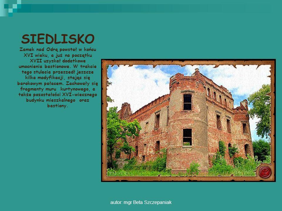 autor: mgr Beta Szczepaniak SIEDLISKO Zamek nad Odrą powstał w końcu XVI wieku, a już na początku XVII uzyskał dodatkowe umocnienia bastionowe. W trak