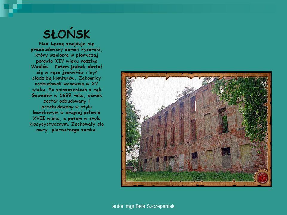autor: mgr Beta Szczepaniak SŁOŃSK Nad Łęczą znajduje się przebudowany zamek rycerski, który wzniosła w pierwszej połowie XIV wieku rodzina Wedlów. Po