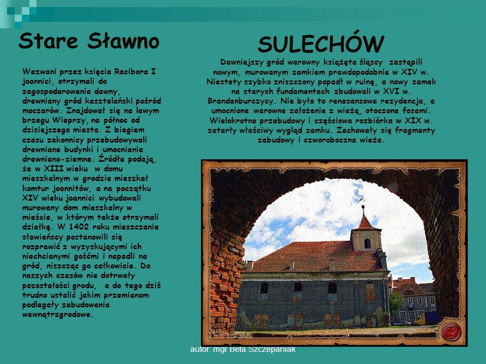autor: mgr Beta Szczepaniak Wezwani przez księcia Racibora I joannici, otrzymali do zagospodarowania dawny, drewniany gród kasztelański pośród moczaró