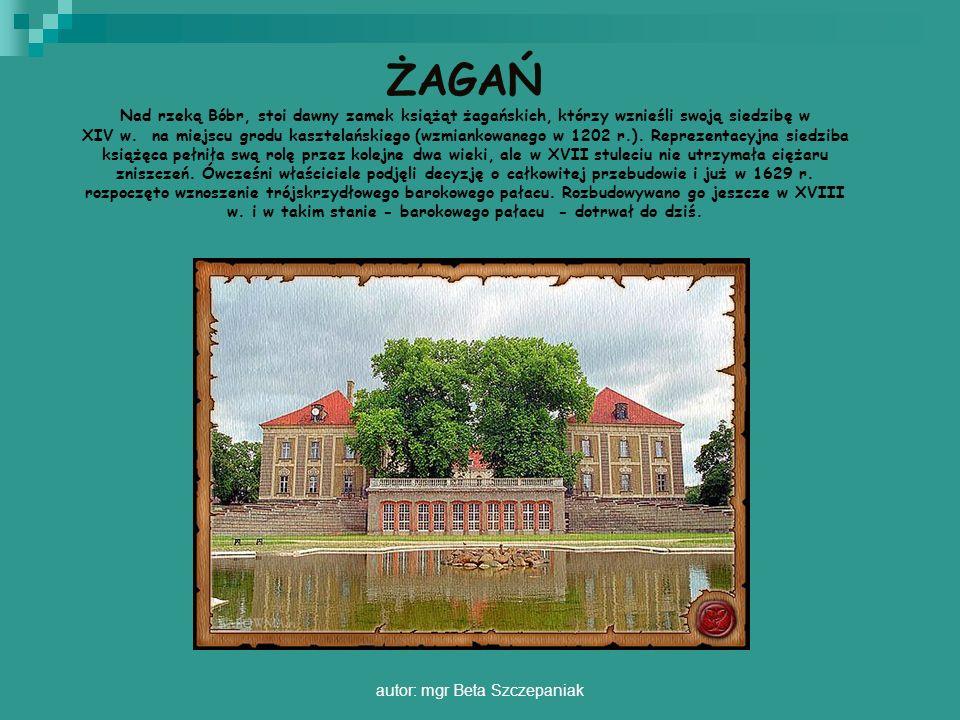autor: mgr Beta Szczepaniak ŻAGAŃ Nad rzeką Bóbr, stoi dawny zamek książąt żagańskich, którzy wznieśli swoją siedzibę w XIV w. na miejscu grodu kaszte