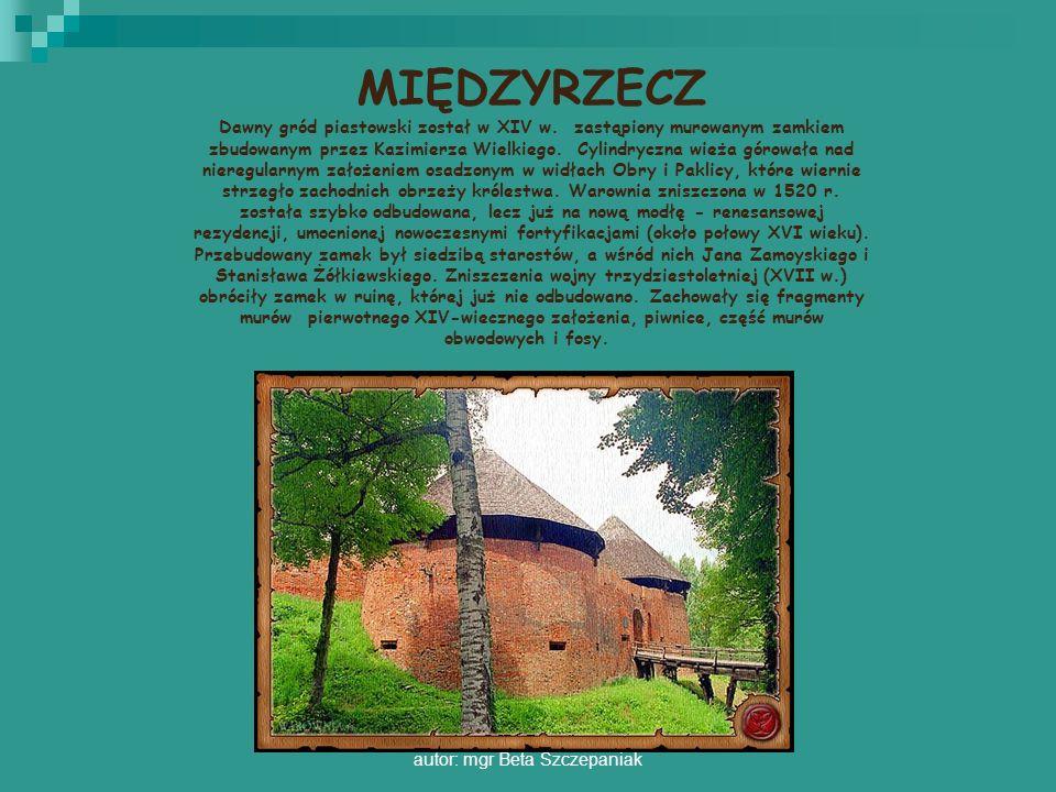 autor: mgr Beta Szczepaniak MIĘDZYRZECZ Dawny gród piastowski został w XIV w. zastąpiony murowanym zamkiem zbudowanym przez Kazimierza Wielkiego. Cyli