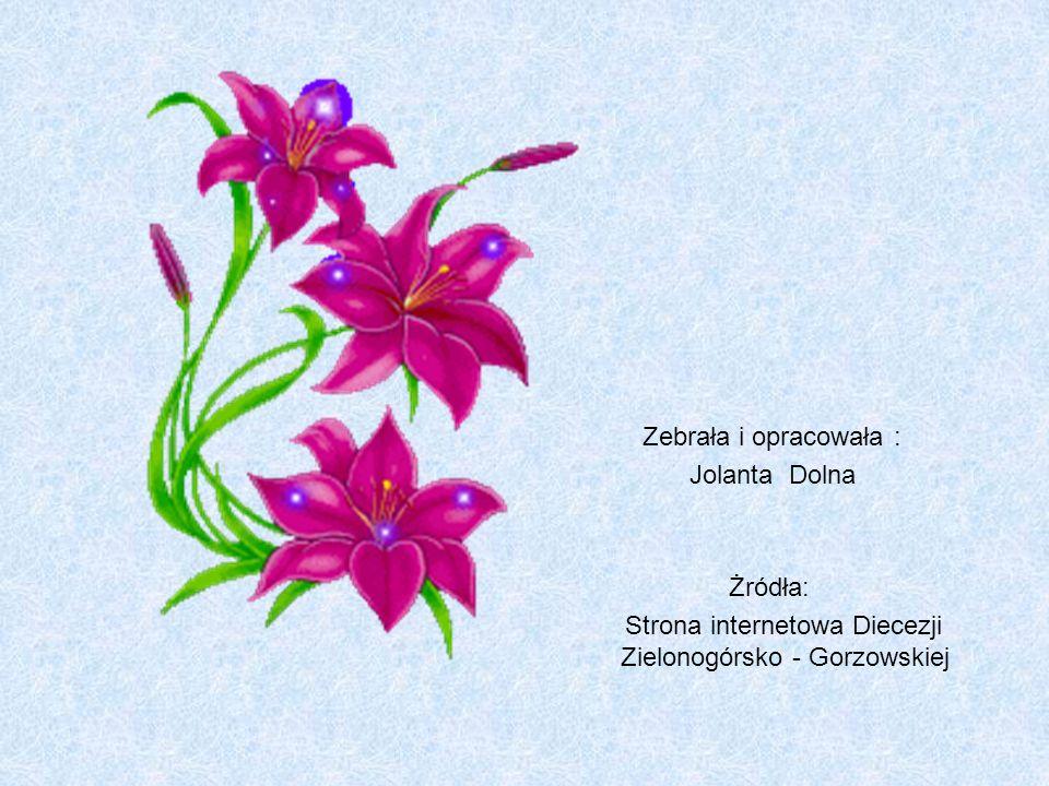 Zebrała i opracowała : Jolanta Dolna Żródła: Strona internetowa Diecezji Zielonogórsko - Gorzowskiej