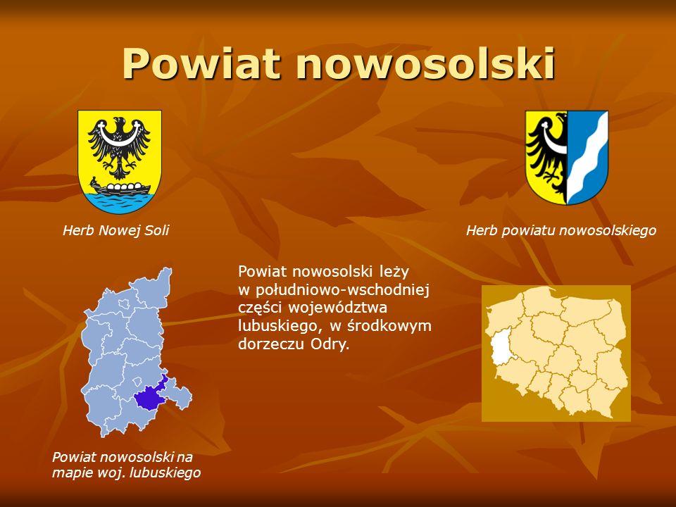 Prezentację przygotowała mgr Iwona Nowalińska nauczyciel-bibliotekarz Publicznej Szkoły Podstawowej nr 1 im.