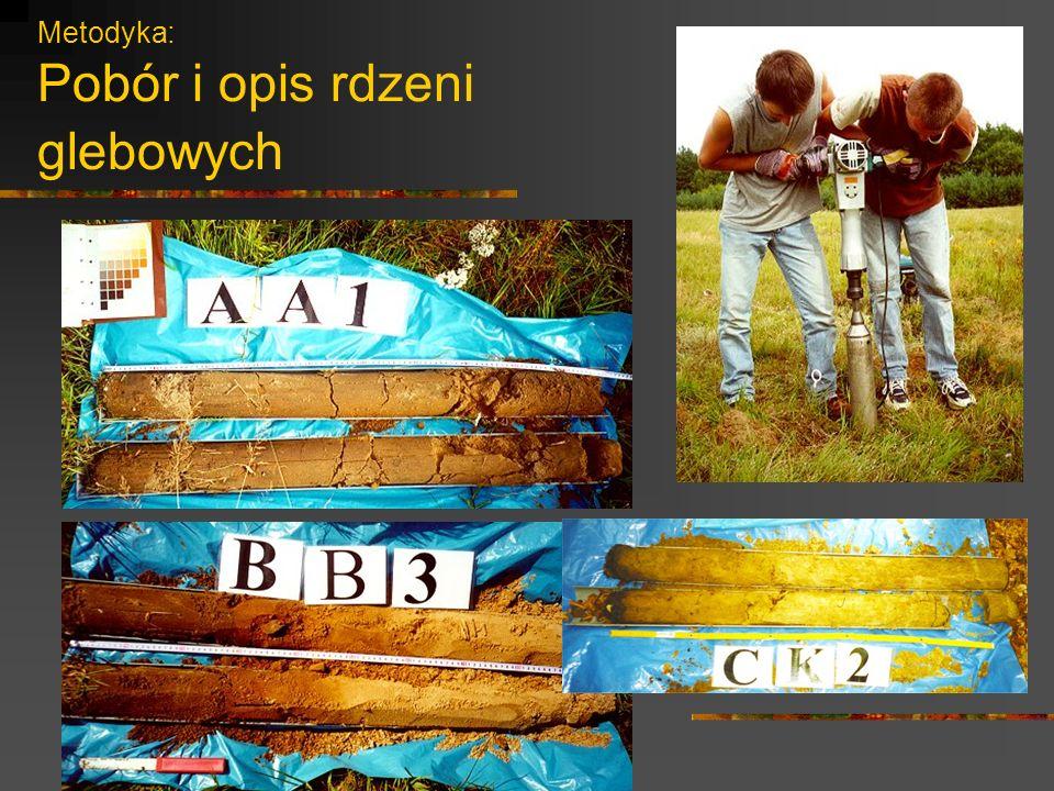 Metodyka: Pobór i opis rdzeni glebowych