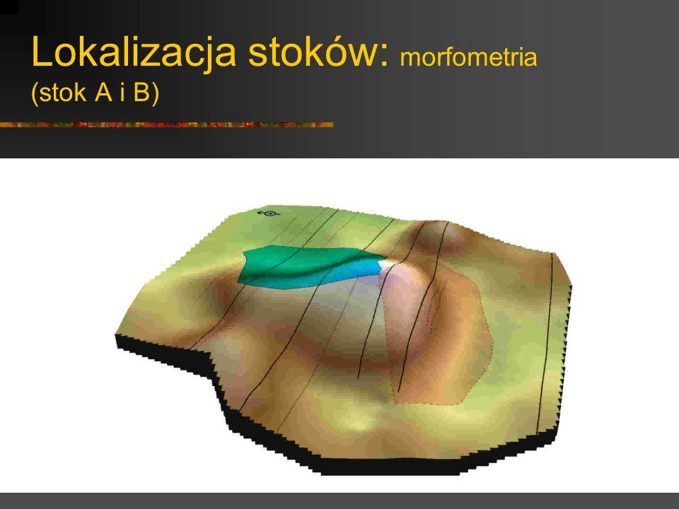 Lokalizacja stoków: morfometria (stok C)