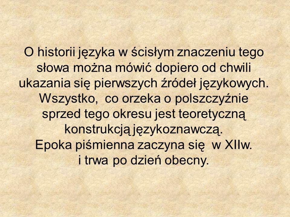 O historii języka w ścisłym znaczeniu tego słowa można mówić dopiero od chwili ukazania się pierwszych źródeł językowych. Wszystko, co orzeka o polszc