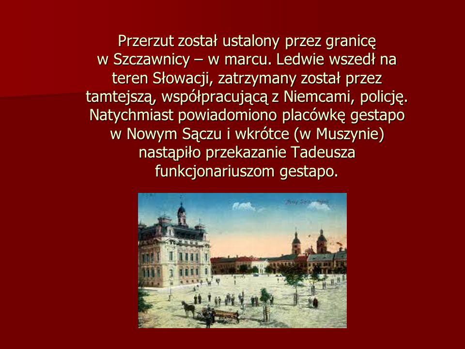 Przerzut został ustalony przez granicę w Szczawnicy – w marcu. Ledwie wszedł na teren Słowacji, zatrzymany został przez tamtejszą, współpracującą z Ni