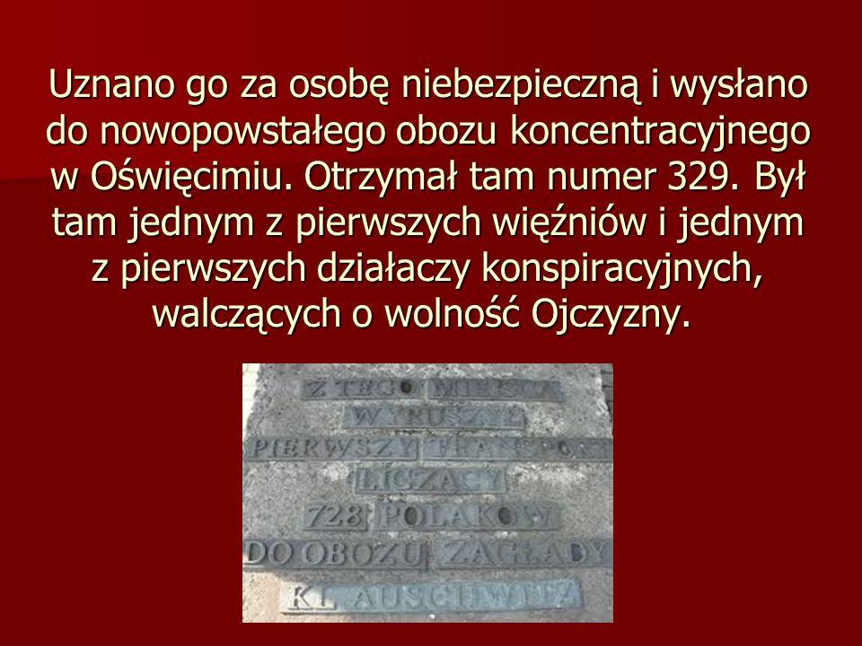 Uznano go za osobę niebezpieczną i wysłano do nowopowstałego obozu koncentracyjnego w Oświęcimiu. Otrzymał tam numer 329. Był tam jednym z pierwszych