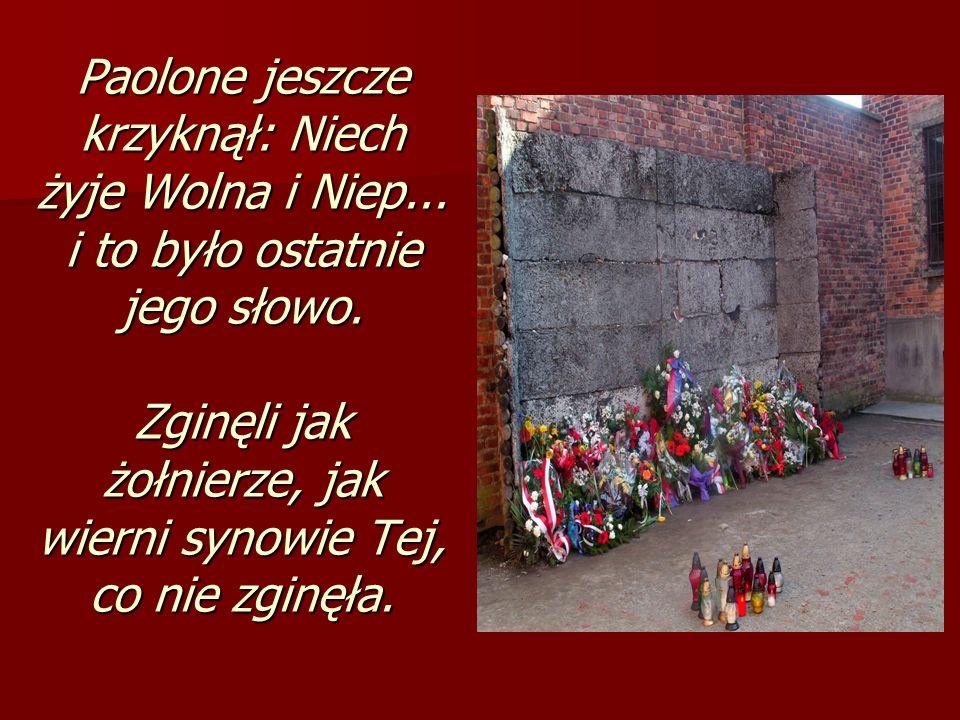Paolone jeszcze krzyknął: Niech żyje Wolna i Niep... i to było ostatnie jego słowo. Zginęli jak żołnierze, jak wierni synowie Tej, co nie zginęła.