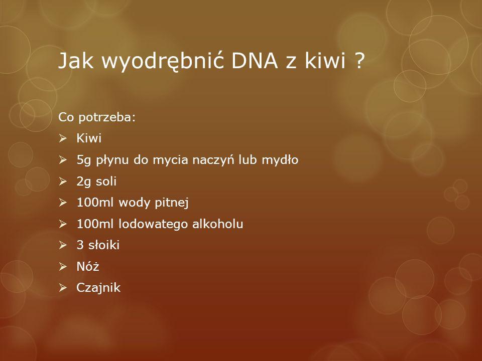 Jak wyodrębnić DNA z kiwi ? Co potrzeba: Kiwi 5g płynu do mycia naczyń lub mydło 2g soli 100ml wody pitnej 100ml lodowatego alkoholu 3 słoiki Nóż Czaj