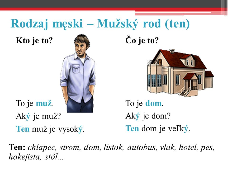 Ten: chlapec, strom, dom, lístok, autobus, vlak, hotel, pes, hokejista, stôl...