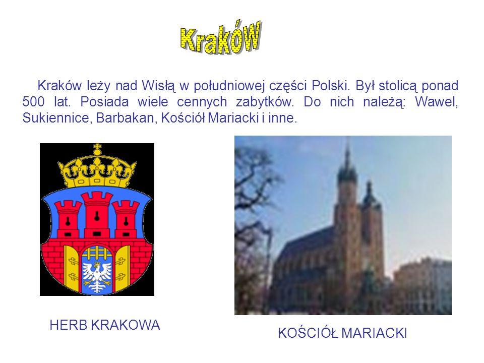 Kraków leży nad Wisłą w południowej części Polski. Był stolicą ponad 500 lat. Posiada wiele cennych zabytków. Do nich należą: Wawel, Sukiennice, Barba