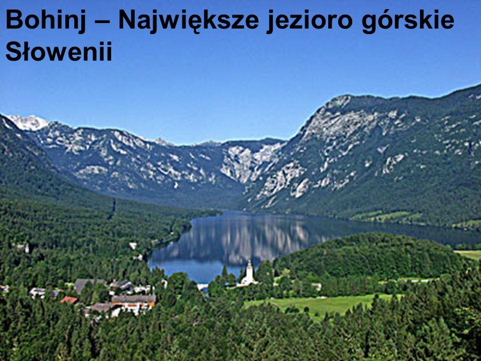 Słowenia to w większości kraj wyżynny i górski: 90% powierzchni kraju leży ponad 300 m n.p.m.