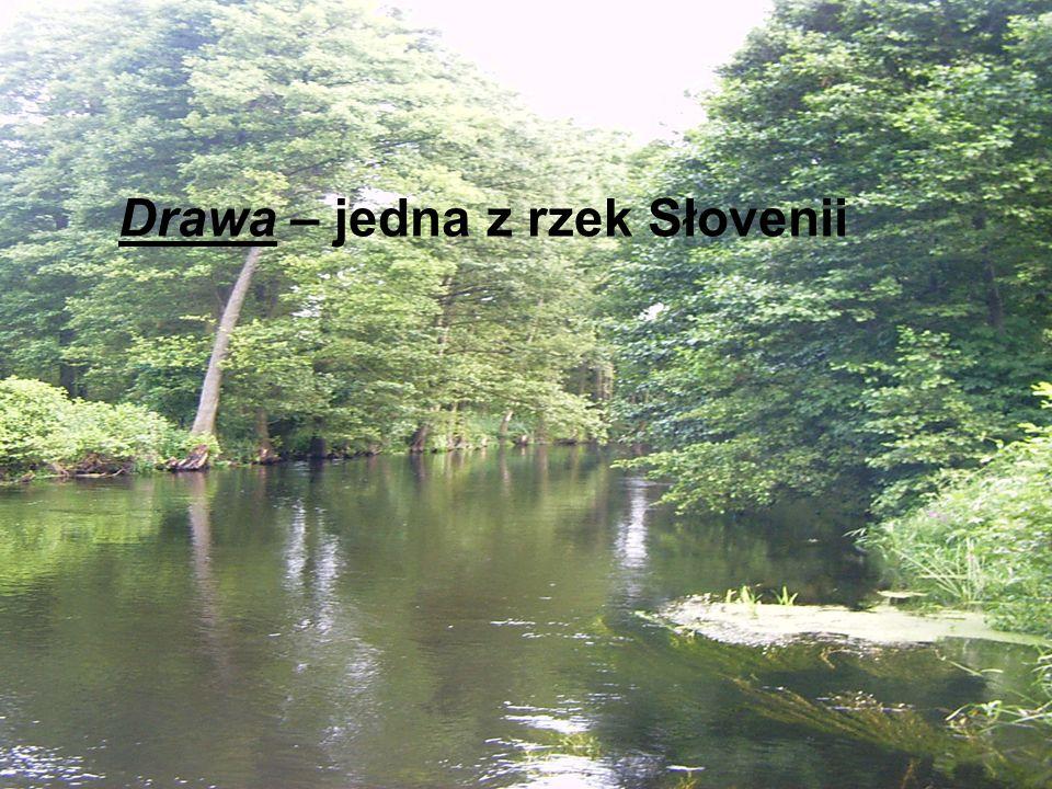 Planica - Dolina górska położona w północno-zachodniej części Słowenii (przy granicy z Włochami i Austrią) niedaleko Kraniskiej Góry.