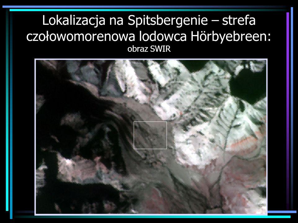 Lokalizacja na Spitsbergenie – strefa czołowomorenowa lodowca Hörbyebreen: obraz SWIR