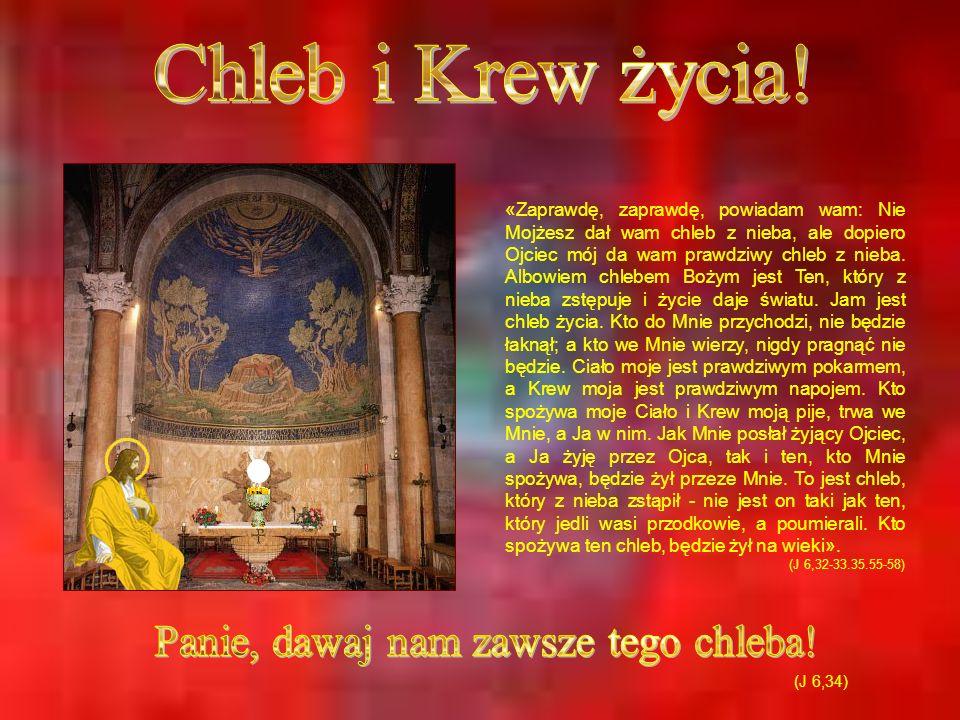 «Zaprawdę, zaprawdę, powiadam wam: Nie Mojżesz dał wam chleb z nieba, ale dopiero Ojciec mój da wam prawdziwy chleb z nieba. Albowiem chlebem Bożym je