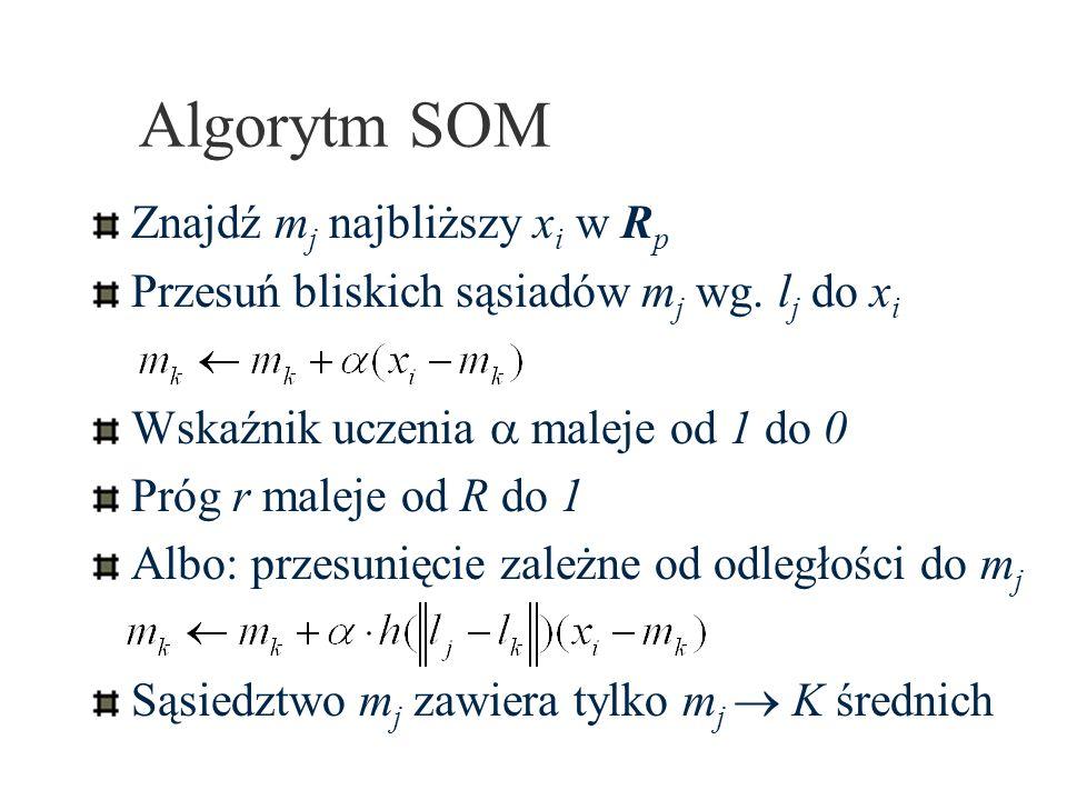 Algorytm SOM Znajdź m j najbliższy x i w R p Przesuń bliskich sąsiadów m j wg. l j do x i Wskaźnik uczenia maleje od 1 do 0 Próg r maleje od R do 1 Al