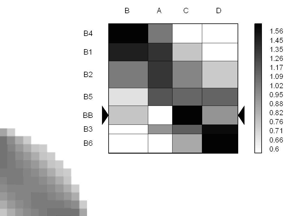 Mapa nadreprezentacji w kolorze