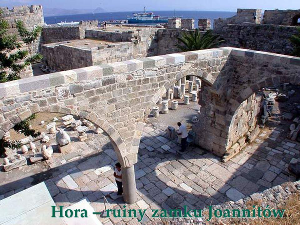 Hora – ruiny zamku Joannitów