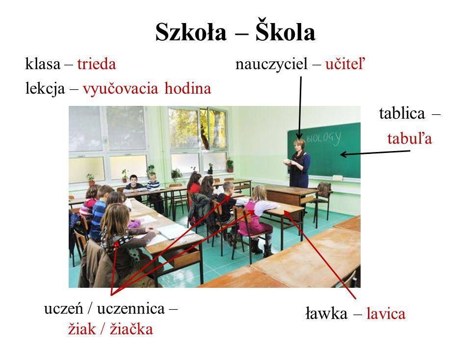 Szkoła – Škola uczeń / uczennica – žiak / žiačka nauczyciel – učiteľ ławka – lavica tablica – tabuľa klasa – trieda lekcja – vyučovacia hodina