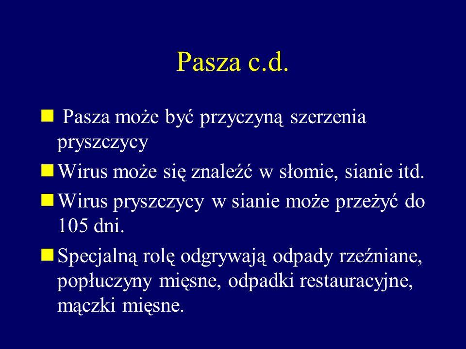 Pasza c.d. Pasza może być przyczyną szerzenia pryszczycy Wirus może się znaleźć w słomie, sianie itd. Wirus pryszczycy w sianie może przeżyć do 105 dn