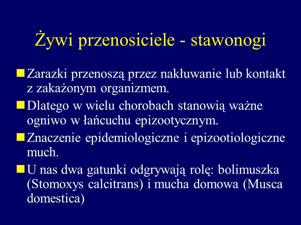 Żywi przenosiciele - stawonogi Zarazki przenoszą przez nakłuwanie lub kontakt z zakażonym organizmem. Dlatego w wielu chorobach stanowią ważne ogniwo